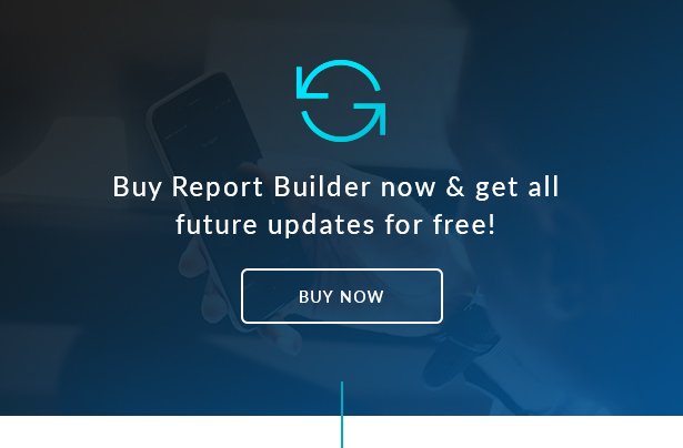 Report Builder add-on for wpDataTables - Generate Word DOCX and Excel XLSX documents - 6